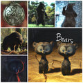 Brave Alphabet: B from Bear