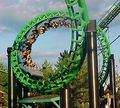 Darien Lake green Viper - rollercoasters photo