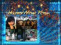 Duong hoa Nguyen Hue xuan Quy Ty 2013 Quynh Anh