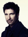 Dylan McDermott - scarletwitch photo
