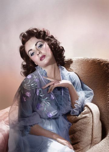 Elisabeth Taylor fond d'écran possibly containing a portrait titled Elizabeth Taylor