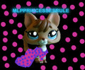For tinkerbell66799 - littlest-pet-shop fan art