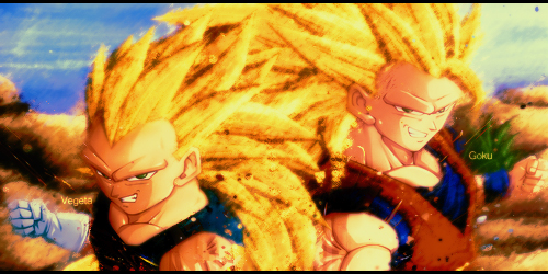 Гоку and vegeta ssj3