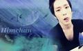 Himchan - himchan wallpaper