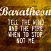 House Baratheon - a-song-of-ice-and-fire icon
