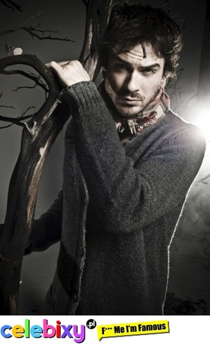 The Vampire Diaries TV Show wallpaper entitled Ian Somerhalder