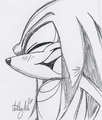 Knuckles The Echidna - sonic-the-hedgehog photo