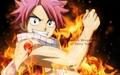 Natsu Flames