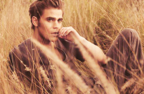Paul Wesley wallpaper with a grainfield entitled Paul Wesley