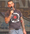 Punk - cm-punk photo