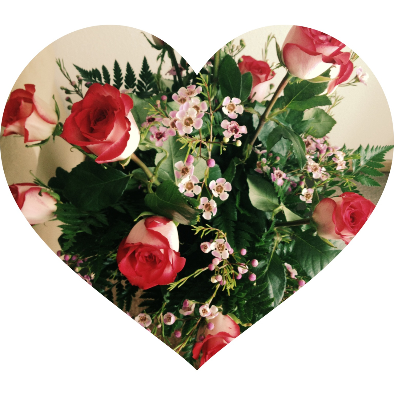 Red roses flowers photo 33624121 fanpop for Images of bouquets of roses