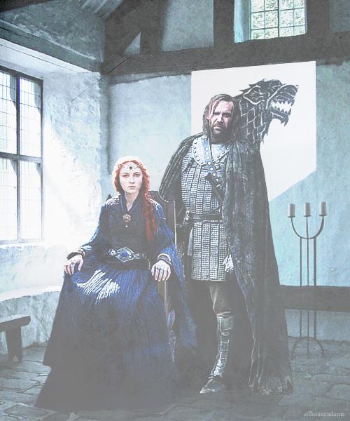 Sandor & Sansa - Sandor and Sansa Fan Art (33615268) - Fanpop