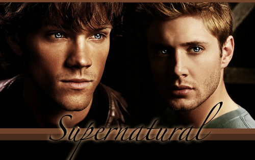 Supernatural wallpaper possibly containing a portrait titled Supernatural