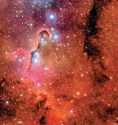 The Elephant's Truk Nebula