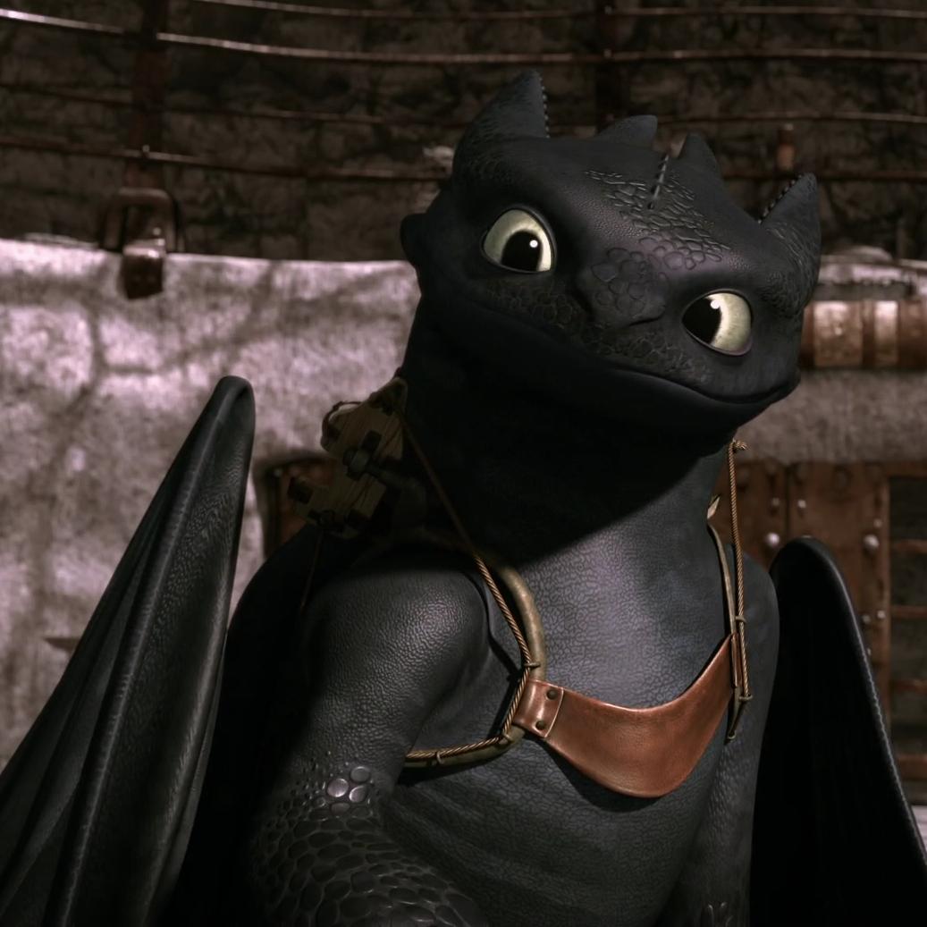 DreamWorks Dragons Riders of Berk Changewing