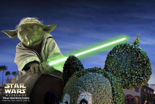 Yoda i tình yêu bạn <3 *************