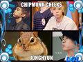 chipmunk cheeks JongHyun