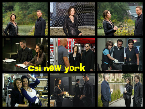 CSI:NY پیپر وال titled csi new york