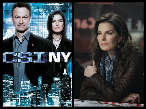 CSI:NY پیپر وال possibly with a sign, a newspaper, and a business suit entitled csi new york