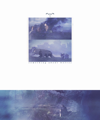 The lone wolf dies but the pack survives