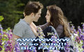 look so cute - twilight-series photo
