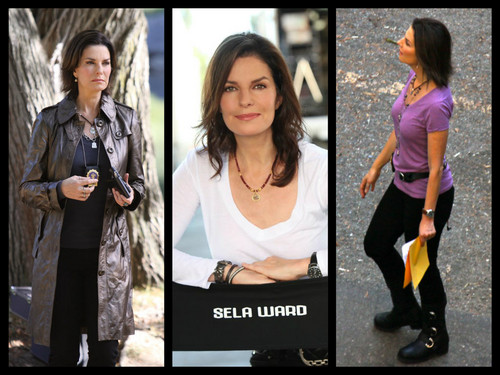 CSI:NY wallpaper probably with a well dressed person and a portrait called sela ward