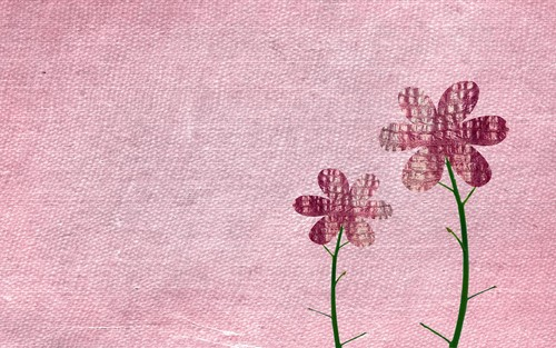 Flowers wallpaper entitled wallflower
