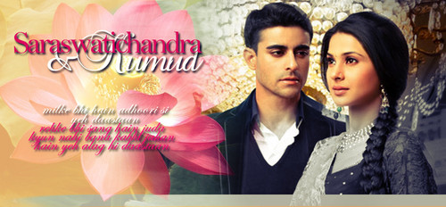 saraswatichandra (série de televisão) wallpaper probably containing a portrait entitled || Saraswatichandra ||