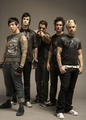 A7X wallpaper  - avenged-sevenfold photo