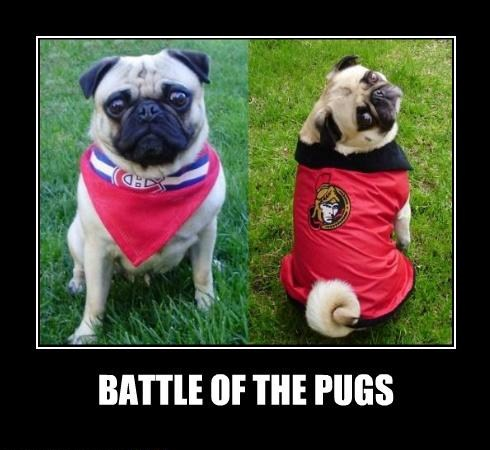 Battle Of The Pug Hockey fans