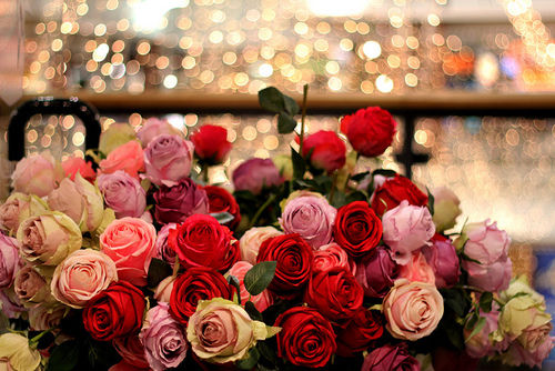 Beautiful fleurs For my Fairy Sister ♥