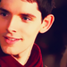 Beautiful Merlin. - merlin-on-bbc icon
