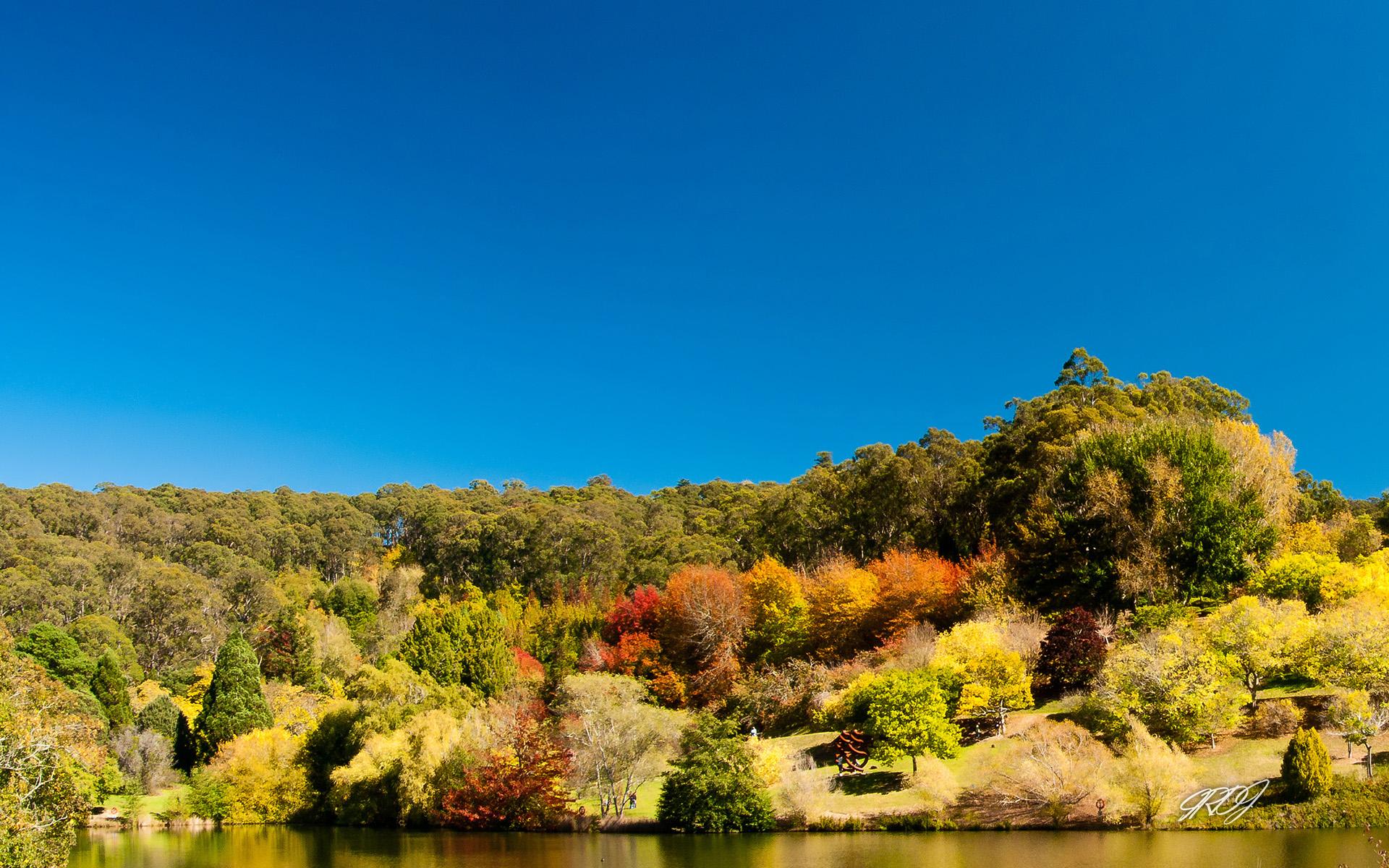 Australian Landmarks & Animals Best Of Bing Australia