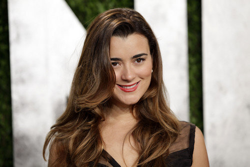 Cote de Pablo at the Vanity Fair Oscars Party 2//24/13