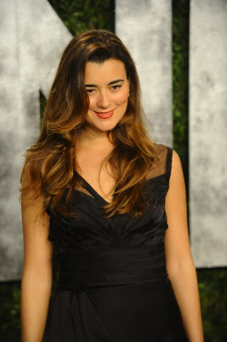 Cote de Pablo at the Vanity Fair Oscars Party 2013