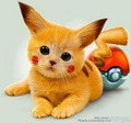 Cute? - pokemon fan art