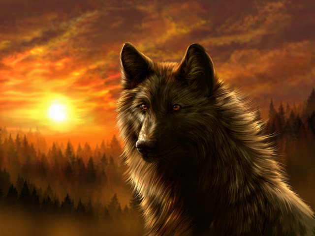 Wolves Images Dark Wolf Wallpaper And Background Photos 33748339
