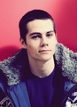 Dylan &lt;3 - dylan-obrien photo