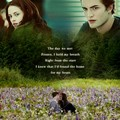 Edward and Bella - the-cullens photo