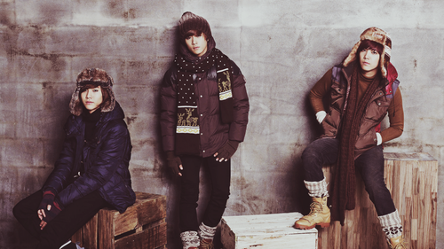 F.T. Island वॉलपेपर probably with an outerwear, a hood, and a box कोट titled FT Island
