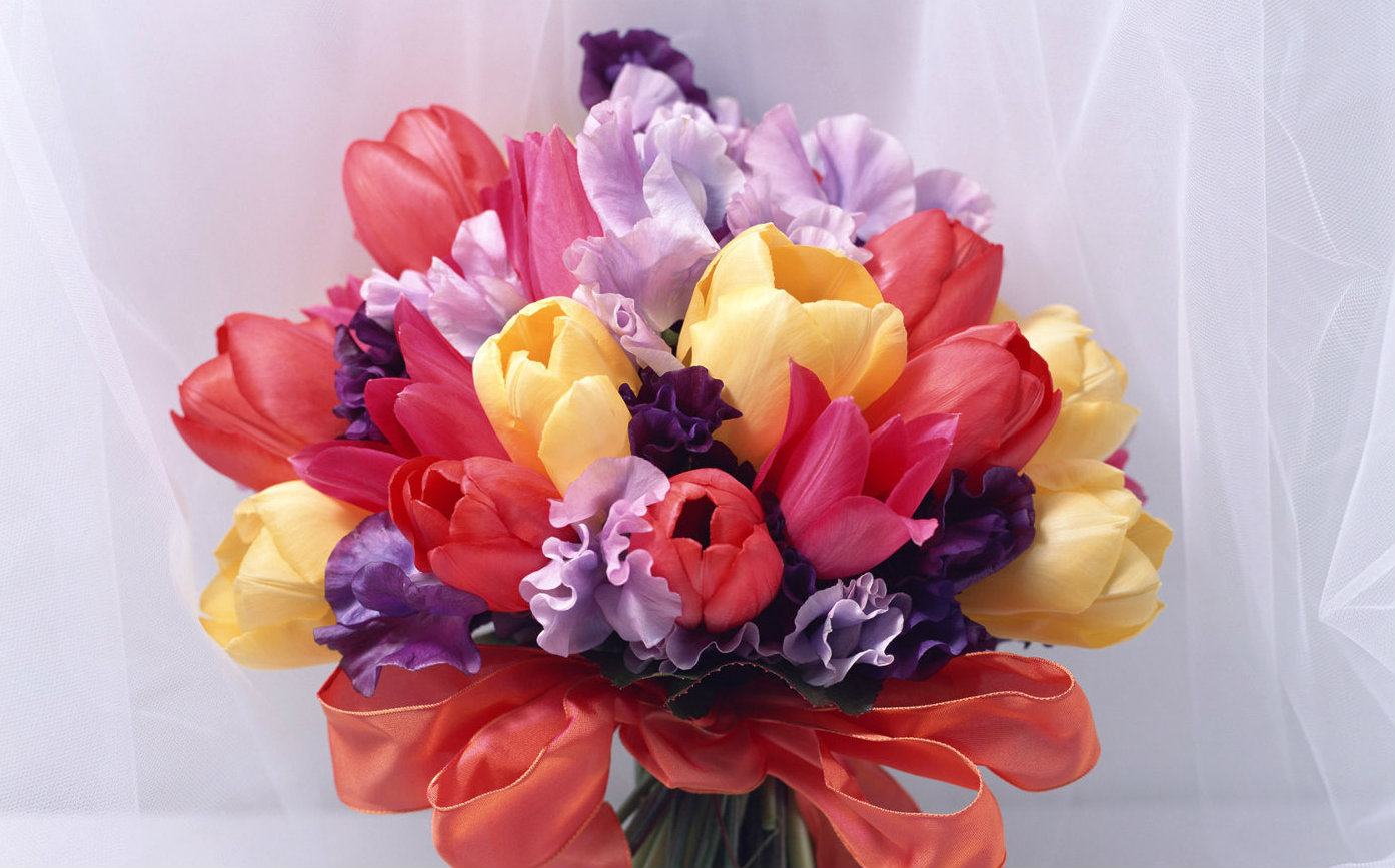 عکس+زیباترین+گلهای+جهان