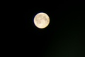 Full Moon-11-11-11 - paganism photo