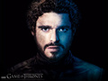Robb Stark - game-of-thrones wallpaper