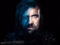 Sandor Clegane - game-of-thrones wallpaper