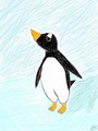 Gentoo Penguin Drawing - penguins fan art