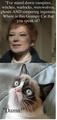 Grumpy Cat Meets Julia Hoffman - grayson-hall fan art