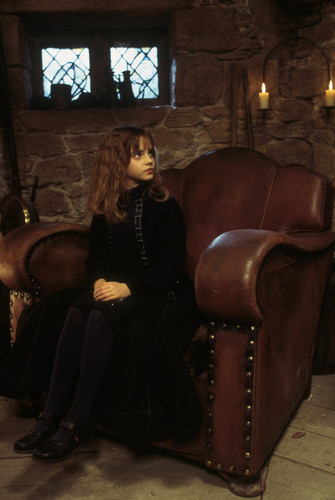 Hermione Granger wallpaper probably with a drawing room, a living room, and a parlor titled Hermione Granger