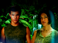Jacob & Leah - twilight-couples wallpaper