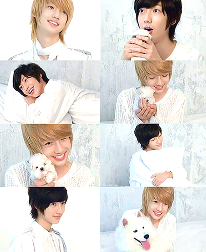 Boyfriend wallpaper probably with a bouquet entitled Kwangmin
