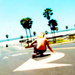 Lords of Dogtown - lords-of-dogtown icon